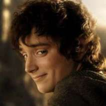 angel wise frodo